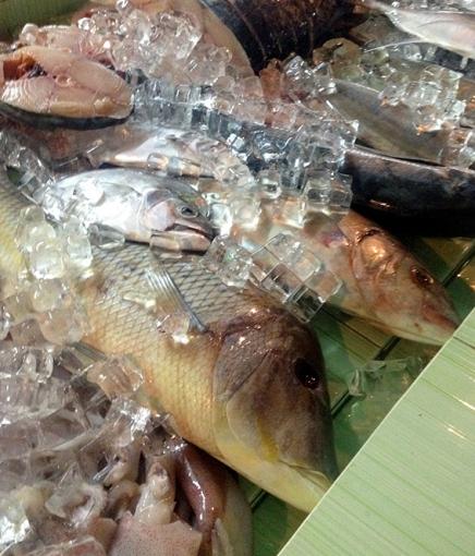 bbq fisk