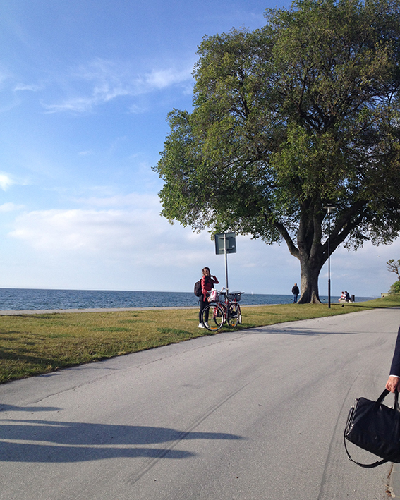 cykla gotland